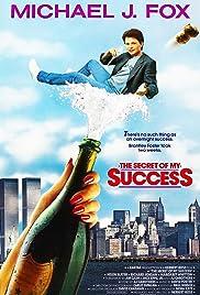 Afbeeldingsresultaat voor secret of my succes film poster