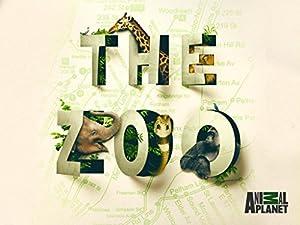 The Zoo Season 3 Episode 7