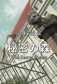 The Secret Woods Poster