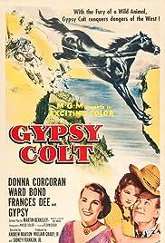 Gypsy Colt Poster