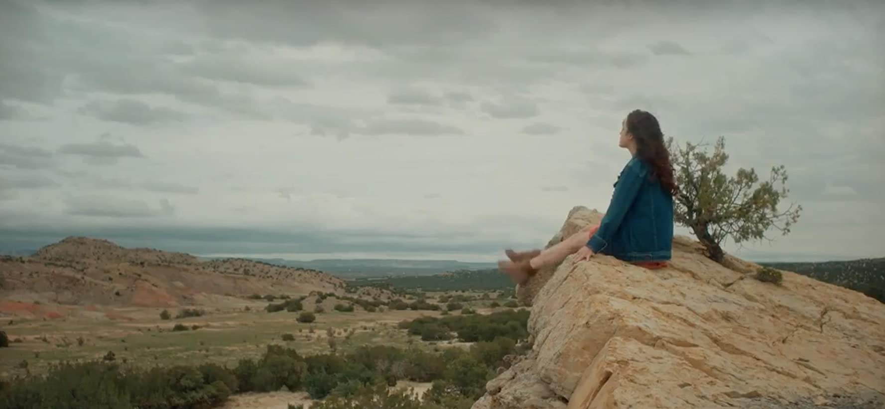 Imitation Girl (2017), Online Subtitrat