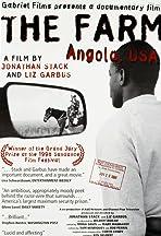The Farm: Angola, USA