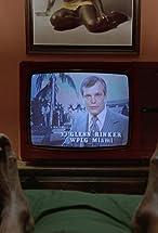 Glenn Rinker's primary photo